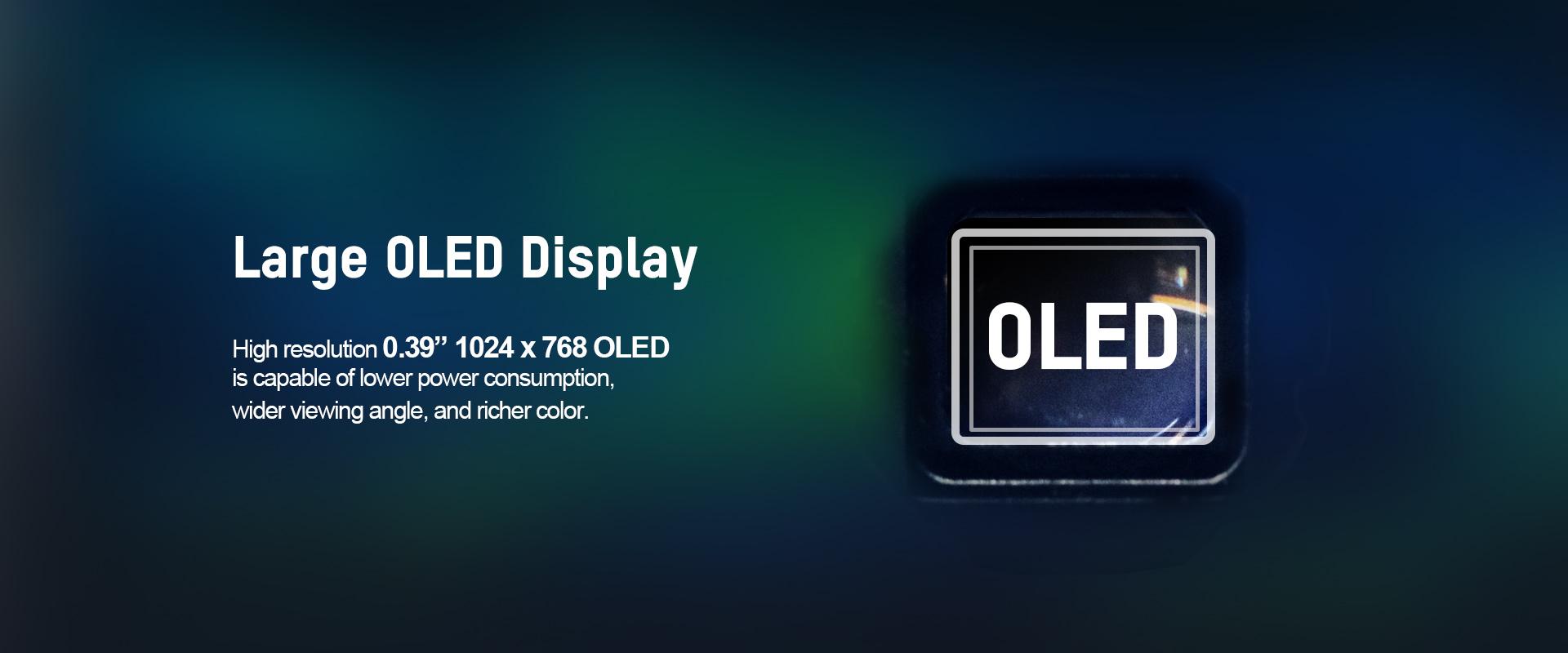 02-Large OLED Display_TS16.jpg