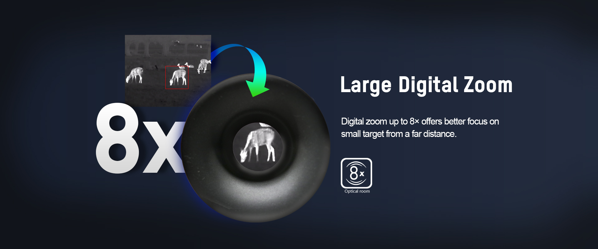 03-Large Digital Zoom_LYNX.jpg